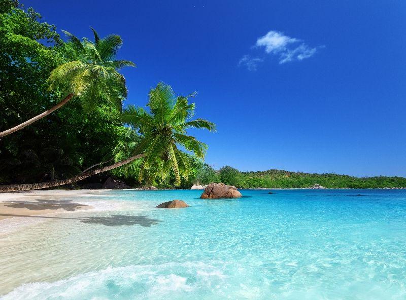 картинки на рабочий стол море пляж пальмы № 258630 скачать