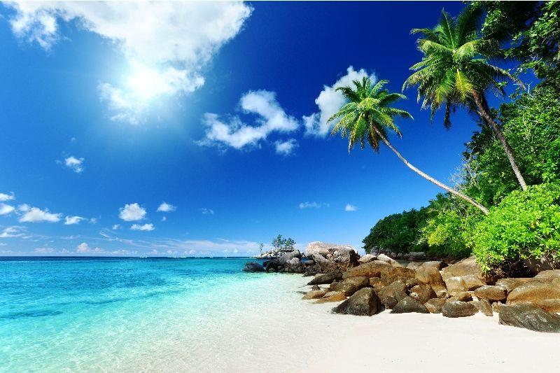 картинки на рабочий стол море пляж № 513158 без смс