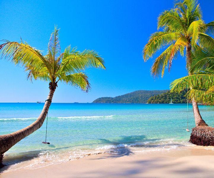 Обои море пляж пальмы