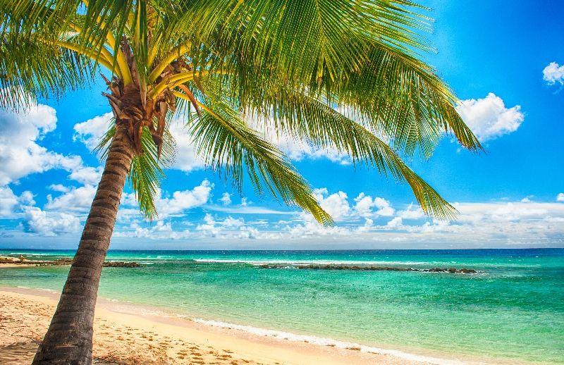 Картинки на рабочий стол море пляж