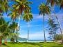 Пальмы, пляж