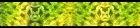 42045 (Размер 17717x3543)