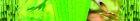 38651 (Размер 17222x2624)