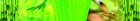36977 (Размер 17222x2624)