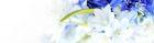 02022 (Размер 7085x1984)