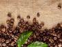 Кофе, чай, шоколад (с)